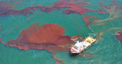 Oljespillet i Mexikanska golfen kan fortsätta påverka