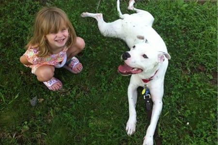 Att ha hund i hemmet kan förbättra immunförsvaret