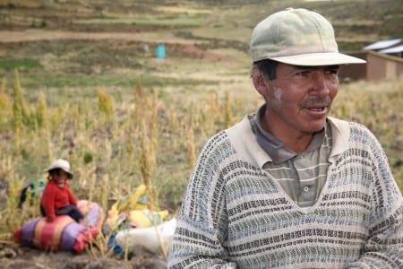 En quinoabonde i Peru. Foto: Alfredo Camacho/Bioversity International/CC BY-NC-ND 2.0
