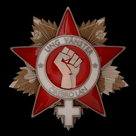 Vänsterordförande utesluten efter stöd till våldsgrupp