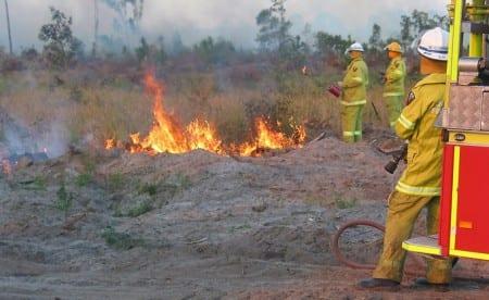 Naturvårdsbränning för att rädda utrotningshotade arter
