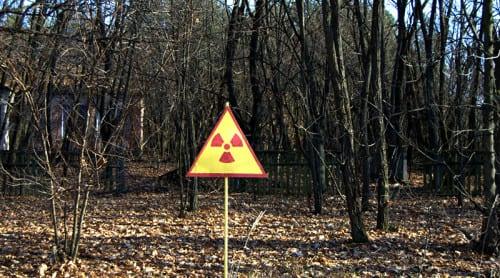 Ökad frekvens av mögel kring reaktorn i Tjernobyl. Foto: Stijn D'haese/CC BY-NC-SA 2.0