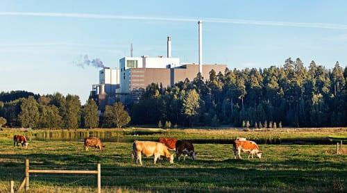 Sverige inte framgångsrik koldioxidminskare