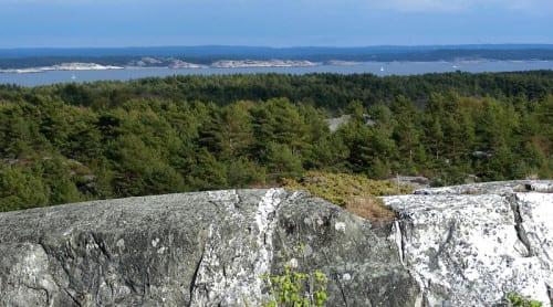Sveriges berggrund nu digitaliserad