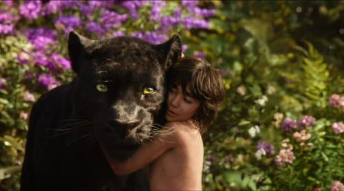 Bagheera hittar Mowgli som övergiven pojke och blir en trogen följeslagare i hans liv. Foto: Walt Disney Pictures