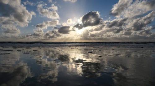 Mycket gifter kvar i Östersjön