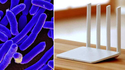 Bacteria, mobile phones & WiFi – a deadly combination?