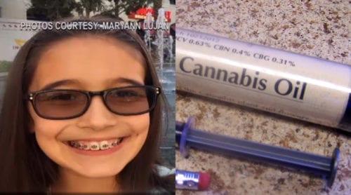 Cannabisolja kan ha räddat livet på 12-årig flicka