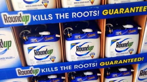 Monsantos Roundup klassas som cancerframkallande