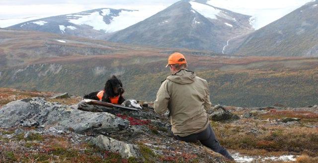 Jaktbrott kan likställs med terrorism