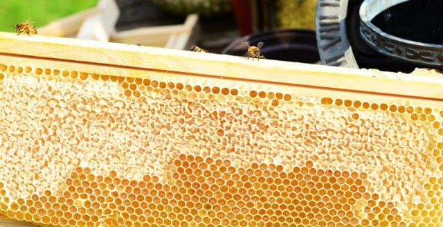 En fjärdedel av honungen innehåller bekämpningsmedel