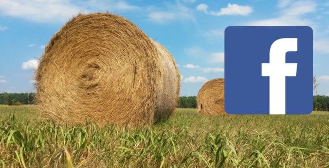 Bedragare lurar svenska bönder på Facebook