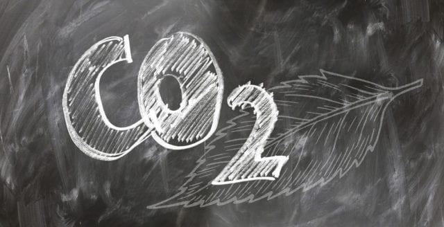 Jordens växtlighet behöver mer koldioxid