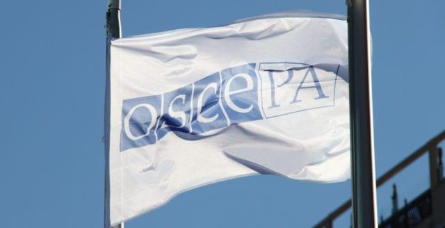 OSSE kritiserar Sveriges valsystem – vill att valhemligheten skyddas