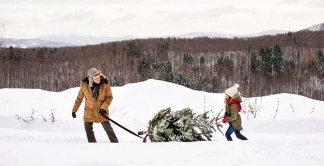 Då ska julen städas ut enligt tradition