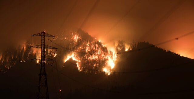 Australien: Över 180 personer gripna för att ha anlagt bränder