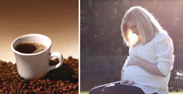 Rekommenderad koffeingräns sänks för gravida