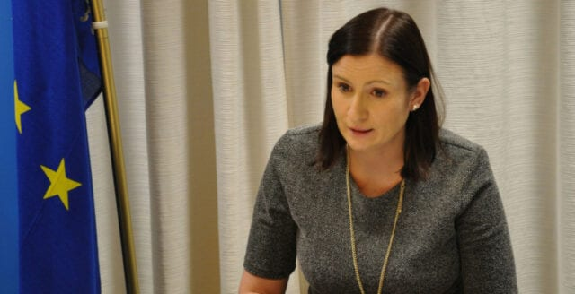 Birgitta Ohlsson får toppjobb på amerikansk lobbyorganisation