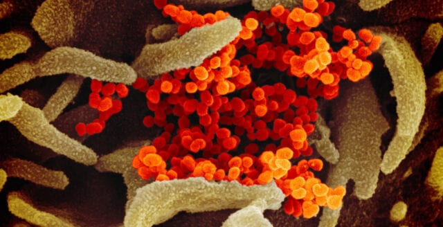 MI6-topp: Kina har förstört alla bevis om coronavirusets ursprung