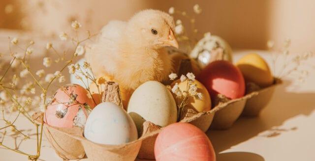 Nya Dagbladet önskar läsarna en glad påsk!
