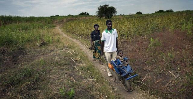 """""""Afrikas gröna revolution gav hunger"""""""