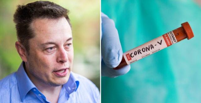 Elon Musk: Coronatesterna ger falska utslag