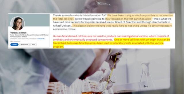 """Läckta Pfizer-mejl: """"Vi har använt fosterceller i vaccintester"""""""